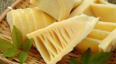 9 receitas com broto de bambu para uma refeição leve e muito diferente