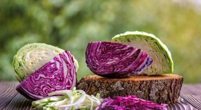 52 receitas com repolho que te farão aproveitar o sabor da verdura