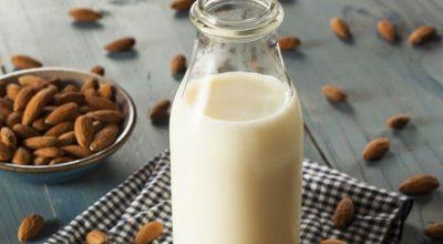 13 receitas de leite vegetal saborosas para você preparar em casa