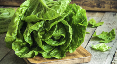 8 receitas com almeirão para não errar no preparo dessa verdura