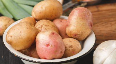 24 receitas com batata asterix para inovar nas suas refeições