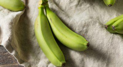24 receitas com biomassa de banana verde para uma alimentação funcional