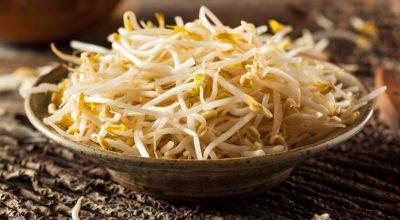 14 receitas com broto de feijão para levar a culinária oriental para sua casa