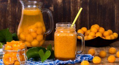 7 receitas com cajá para adicionar essa fruta ao cardápio