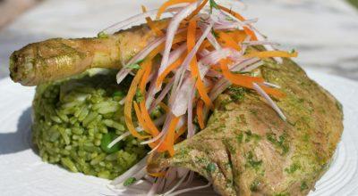 9 receitas de arroz de pato para quem gosta de comidas refinadas