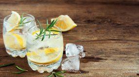 16 receitas de drinks com gin para beber com elegância e sofisticação