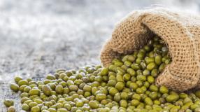 7 receitas de feijão verde cremoso para uma receita nordestina deliciosa