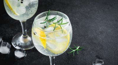 15 receitas de gin tônica com sabor aromático e surpreendente