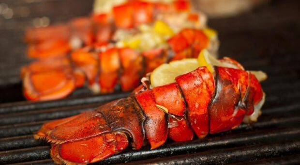15 receitas de lagosta para perder o medo de preparar esse fruto do mar