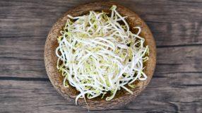 10 receitas de moyashi para que sua próxima refeição seja deliciosa